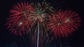Fuegos artificiales brillantemente coloridos en el cielo nocturno Celebrati del Año Nuevo Imagenes de archivo