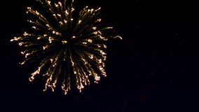 Fuegos artificiales coloridos con el corazón en final en el cielo estrellado stock de ilustración