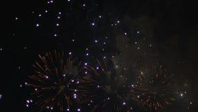 Fuegos artificiales coloridos en el cielo nocturno holiday almacen de video