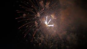 Fuegos artificiales coloridos en el cielo nocturno holiday metrajes