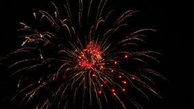 Fuegos artificiales coloridos en el día de fiesta