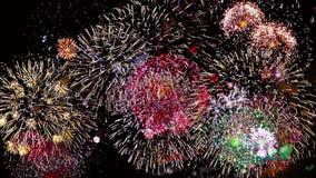 Fuegos artificiales coloridos en la noche del día de fiesta almacen de metraje de vídeo