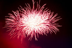 Fuegos artificiales coloridos hermosos del día de fiesta en el fondo negro del cielo Foto de archivo libre de regalías