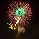 Fuegos artificiales como palma en la noche Fotografía de archivo