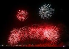 Fuegos artificiales de Beauitful Foto de archivo libre de regalías