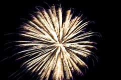 Fuegos artificiales de la celebración Imagen de archivo