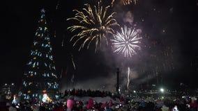 Fuegos artificiales de la celebración de la Feliz Año Nuevo Muchedumbre de fuegos artificiales de observación de la gente almacen de video