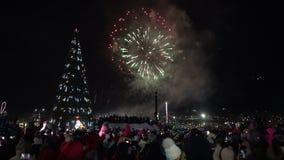 Fuegos artificiales de la celebración de la Feliz Año Nuevo Muchedumbre de fuegos artificiales de observación de la gente almacen de metraje de vídeo