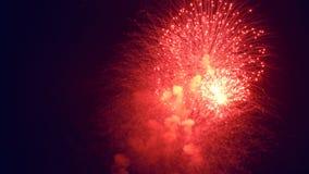 Fuegos artificiales de la noche del color rojo metrajes