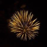 Fuegos artificiales de oro en fondo negro Imagenes de archivo