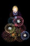 Fuegos artificiales del árbol Imagen de archivo libre de regalías