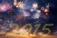 2015 fuegos artificiales del Año Nuevo Fotografía de archivo libre de regalías