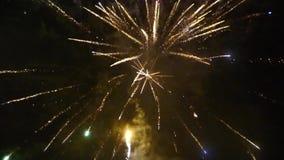 Fuegos artificiales del Año Nuevo metrajes