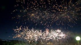 Fuegos artificiales del crisantemo en el cielo nocturno almacen de video
