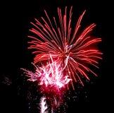 Fuegos artificiales del día de fiesta en el cielo Imagen de archivo libre de regalías