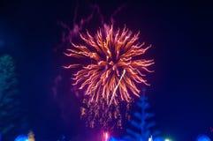 Fuegos artificiales del evento fotografía de archivo libre de regalías