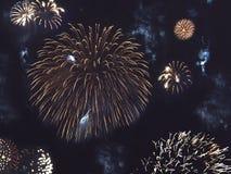 Fuegos artificiales del oro en cielo nocturno Fotos de archivo libres de regalías