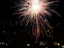 Fuegos artificiales del ` s del Año Nuevo en la ciudad Fotos de archivo