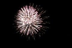 Fuegos artificiales del verano que se encienden encima del cielo nocturno foto de archivo