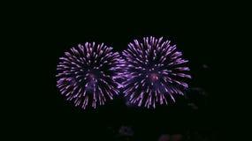 Fuegos artificiales en cielo nocturno fotos de archivo