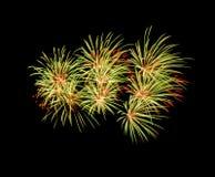 Fuegos artificiales en el cielo nocturno Imagen de archivo libre de regalías