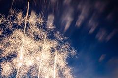Fuegos artificiales en estratagema à Lille del ` de Lille - de Feud foto de archivo