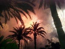 Fuegos artificiales entre las palmeras Foto de archivo libre de regalías