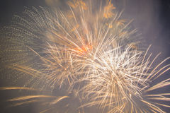 Fuegos artificiales festivos del Año Nuevo Imagenes de archivo