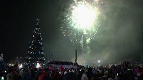 Fuegos artificiales festivos en honor de la Feliz Año Nuevo Muchedumbre de fuegos artificiales de observación de la gente almacen de metraje de vídeo
