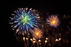 Fuegos artificiales festivos en la forma de una flor azul y de las estrellas del oro Fotografía de archivo libre de regalías
