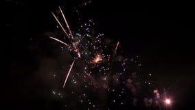 Fuegos artificiales grandes en el cielo del verano de la noche, vídeo de HD metrajes