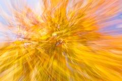 Fuegos artificiales otoñales Imagen de archivo libre de regalías
