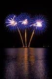 Fuegos artificiales púrpuras Foto de archivo libre de regalías
