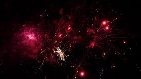 Fuegos artificiales que estallan en diversos colores en el cielo nocturno oscuro almacen de metraje de vídeo