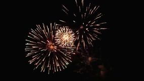 Fuegos artificiales que estallan en el cielo nocturno almacen de metraje de vídeo