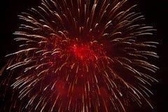 Fuegos artificiales rojos Fotos de archivo