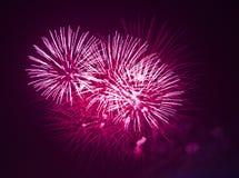 Fuegos artificiales rojos en la noche Fotos de archivo libres de regalías