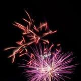 Fuegos artificiales rojos y púrpuras Fotos de archivo