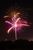 Fuegos artificiales vivos el Día de la Independencia Fotografía de archivo libre de regalías