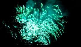Fuegos artificiales y árboles Imagen de archivo libre de regalías