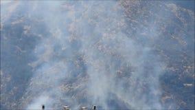 Fuegos salvajes de la montaña cogidos en cámara almacen de video