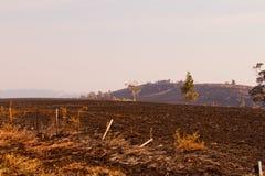 Fuegos Tasmania 2013 de Bush Fotografía de archivo libre de regalías