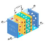Fuel cell diagram. Vector illustration.