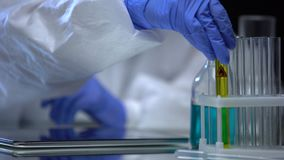 Fuel lab assistant examining test tube with petrol for sediment, quality control. Stock footage stock footage