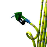 Fuel nozzle cane. Stock Photography