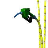 Fuel nozzle cane. Stock Photos