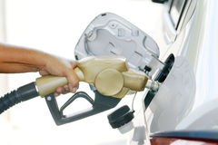 Fuel nozzle with hose. Stock Images