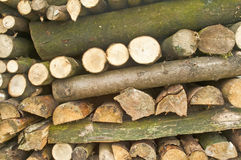 Fuel wood Royalty Free Stock Photography