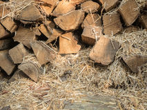 The fuel wood stacked on top of each other mixed with straw. Boards of pine, view of the end. Firewood for heating the. House and kindling. Wood for the stove stock photos