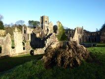 Fuente Abbey Ripon Yorkshire England Fotos de archivo